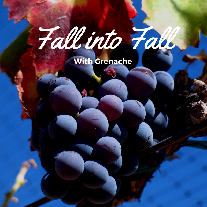 Fall into Fall with Grenache – Wine Wednesday